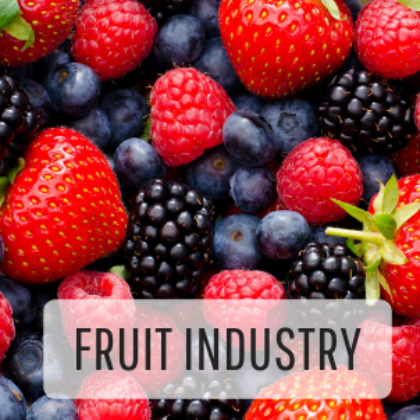 Fruit Industry
