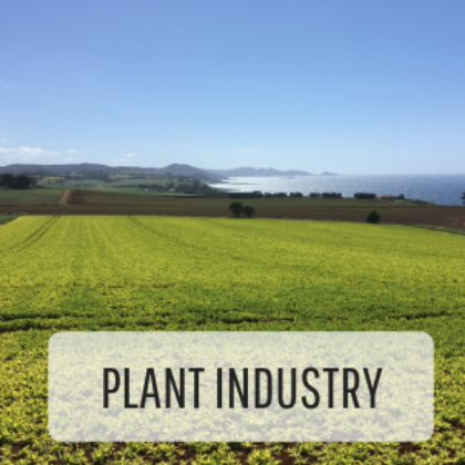 Tfga Plant Industry