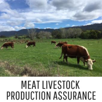 Meat Livestock Assurance